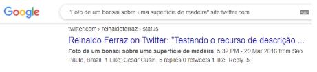 """Reprodução da busca do Google com o texto: Foto de um bonsai sobre uma superfície de madeir"""" site:twitter.com. O ícone do Google colorido aparece no canto superior. Abaixo, em destaque: """"Reinaldo Ferraz on Twitter: """"Testando o recurso de descrição...""""."""