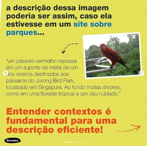 Arte em formato quadrado com a foto de um pássaro vermelho e três blocos de texto.